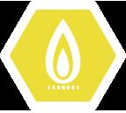 Problemlos für Sie. Problemlos für die Umwelt. Erdgas - Die richtige Entscheidung.